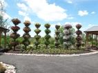 Gradina curcubeului, reprezentand toate culorile din curcubeu